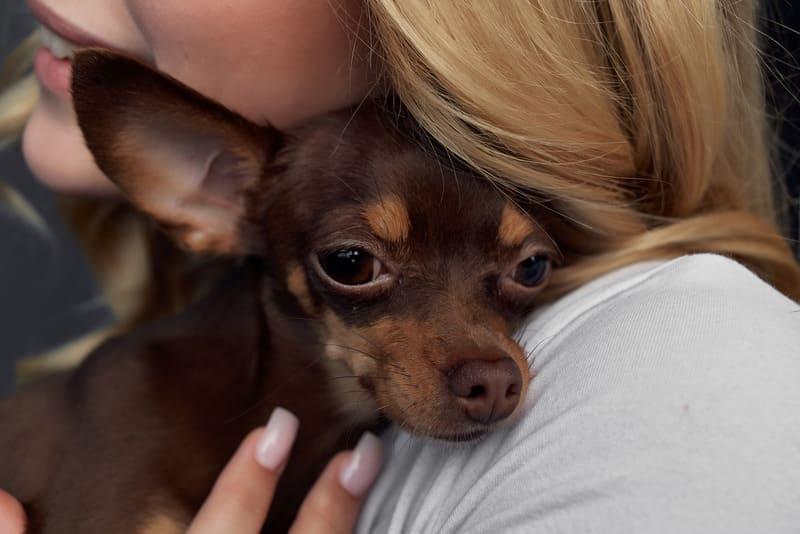 Блондинка с породистой собакой