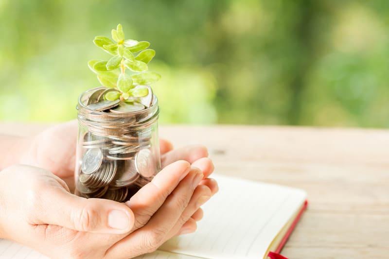 Женщина рука растение растет из бутылки монет